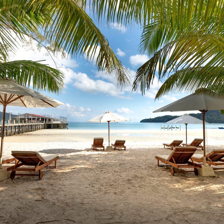 Beach chairs and umbrellas on beach under palm trees