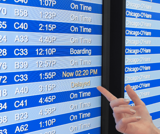 person pointing to delayed flight on board