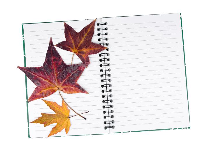 travel journaling ideas