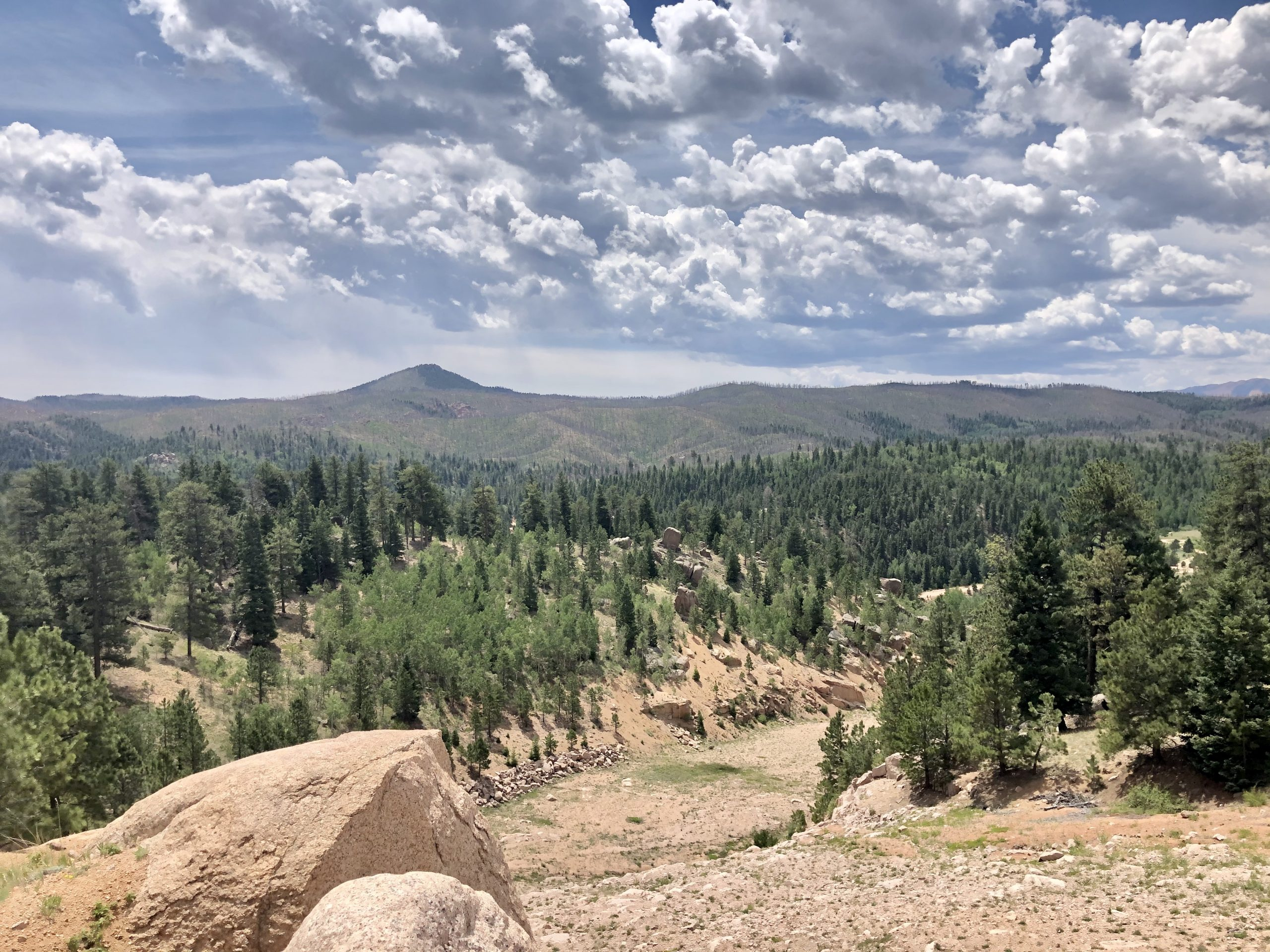 Hikes in Colorado Springs with Breathtaking Views!
