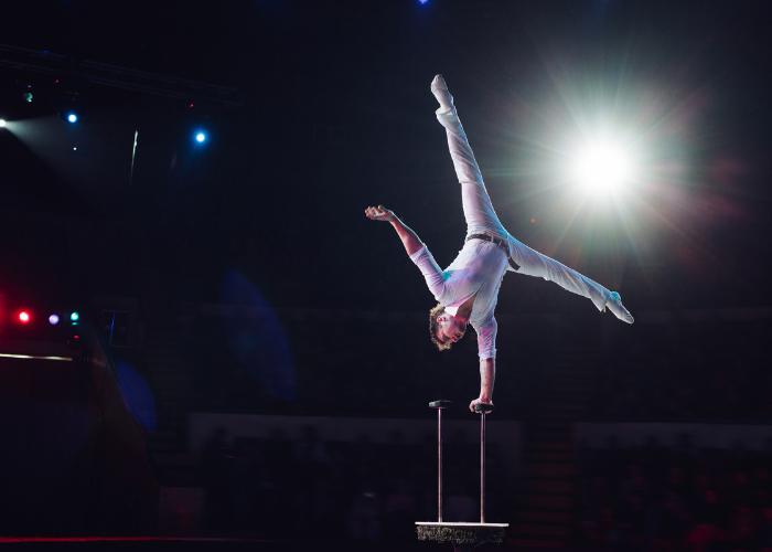 circus acrobat