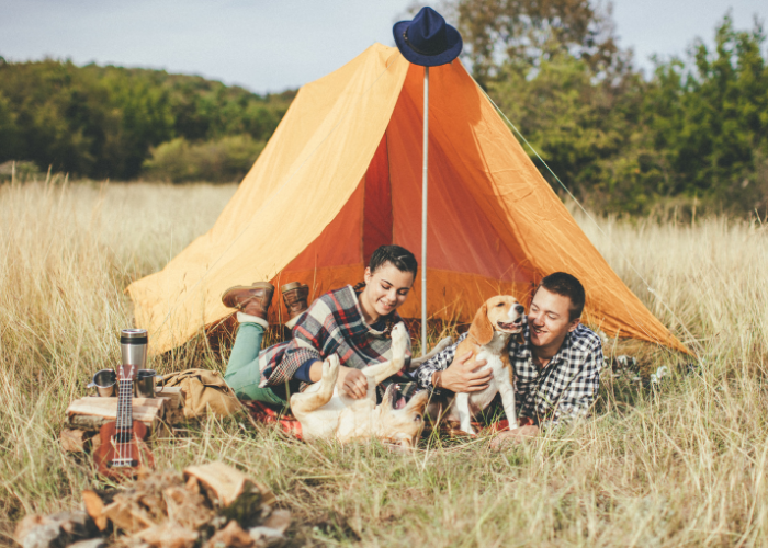 Tent Camping with Dogs: 13 Essentials you Need to Pack!